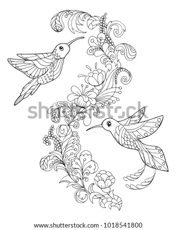 Page For Coloring Book With Two Hummingbirds Graphic Based Illustration Tropical Birds
