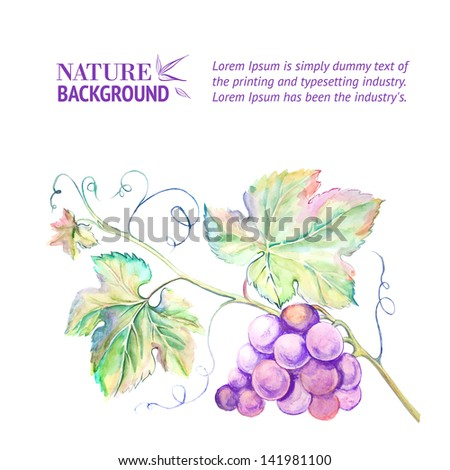 Painted watercolor card with grape leaves. Vector illustration. - stock vector