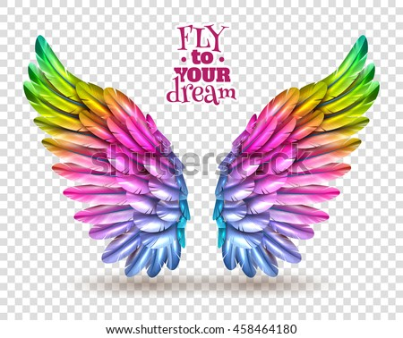 Transparent Wings Stock Images Royalty Free Images