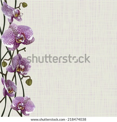 Pale background with purple orchid flowers, stems and buds  - stock vector