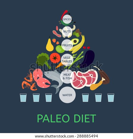 Paleolithic Diet Pyramid. Infographic about healthy food. - stock vector