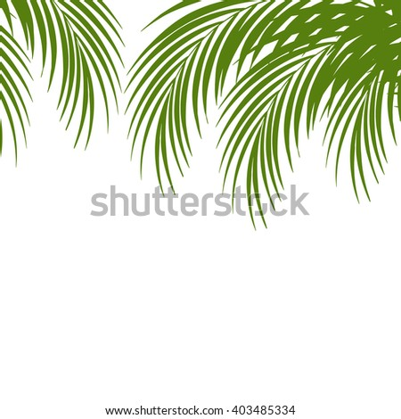 Palm leaf silhouettes background. Tropical leaves. Vector illustration
