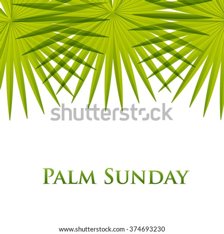 Palm leafs vector background. Vector illustration  for the Christian holiday Palm Sunday