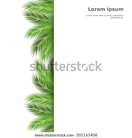 Palm leaves isolated on white background. vector background - stock vector