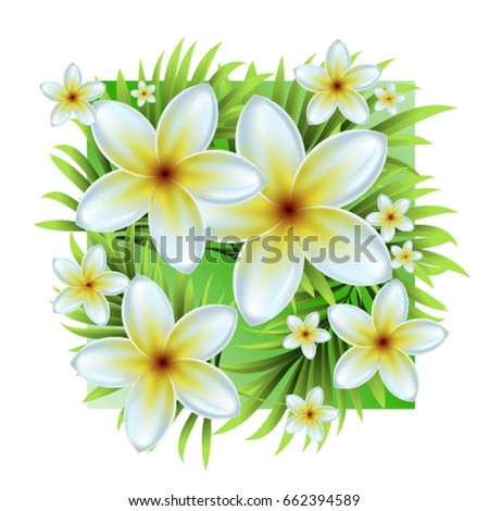 Palm Leaves Tropical White Flowers Vector Stock Vector 662394589 ...