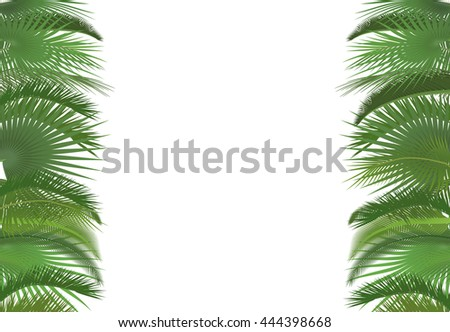 Palm plant tree leaves background template. Exotic tropical festival celebration greeting card.