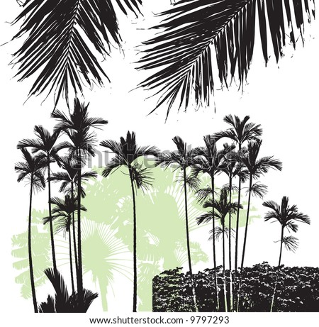 Palm trees 01 - stock vector