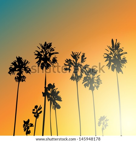 palm trees background, sunset - stock vector