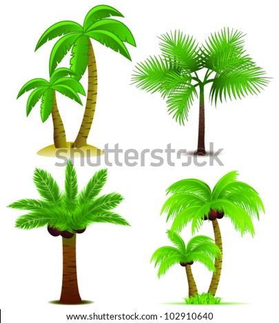 Palm trees collection. Vector - stock vector