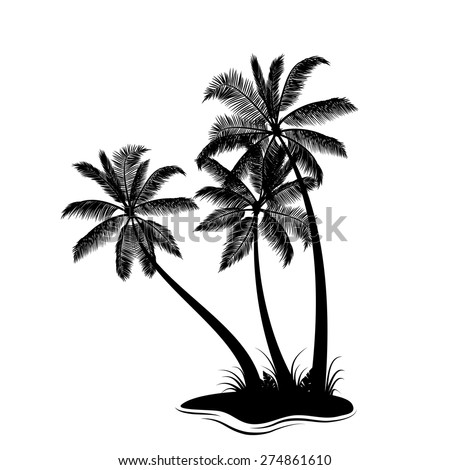 Palm trees silhouette isolated on white - stock vector