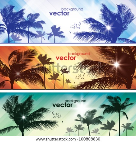 Palms at sunset - stock vector