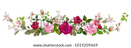 Panoramic View Bouquet Roses Spring Blossom Vector de ...
