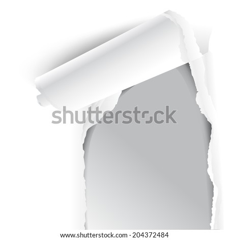 Paper isolated on white background - stock vector