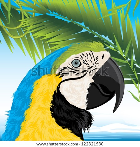 Parrot and palm branches. Vector - stock vector