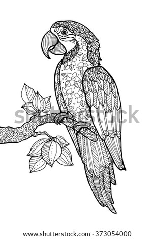 Parrot Ara Macao, exotic bird with floral pattern. Vector. Coloring book page for adult. Zentangle. Hand drawn artwork. Summer concept for party card, ticket, branding, logo, label. Black and white - stock vector