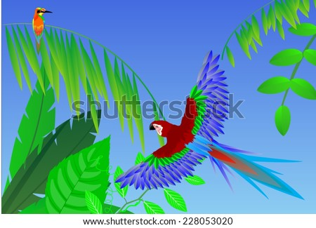Parrot bird flying in the forest - stock vector