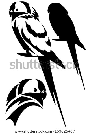 parrot birds design set black and white vector outline and silhouette
