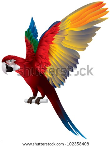 Parrot Spread Wings, Red-and-green Macaw, large mostly-red Green-winged bird, the largest of the Ara genus, vector image - stock vector