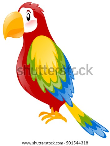 Parrot with colorful feather illustration