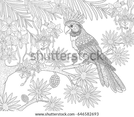 Parrots Cockatoo And Tropical Exotic Flowers In The Jungle Page For Adult Coloring Book Doodle