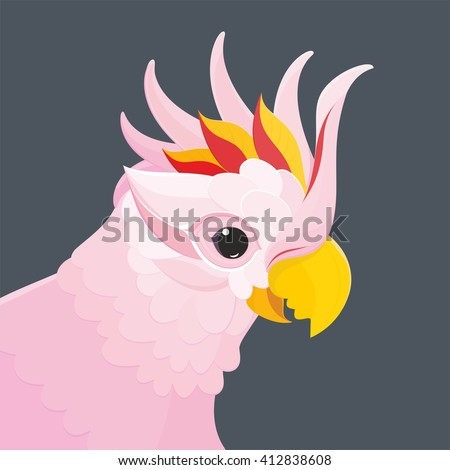 Parrots - head pink parrot Cockatoo. This is vector illustration of pink parrot Cockatoo. - stock vector