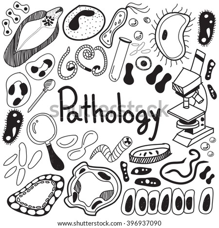 Pathology biology doodle handwriting icons of germ and pathogen for human disease such as virus, bacteria, fungus, amoeba, and Protozoa in white isolated paper background for education (vector)  - stock vector