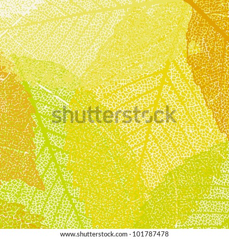 Pattern of autumn maples leaves. EPS 8 vector file included - stock vector