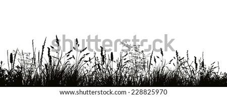 Pattern strip of grass. Vector  - stock vector