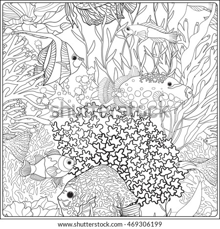 Pattern Decorative Corals Sea Aquarium