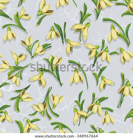 Pattern with snowdrop flowers, graphics vector illustration - stock vector