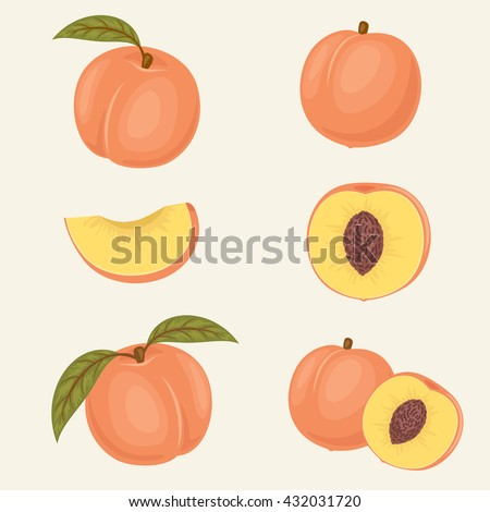 Peach icons. Fresh close up peach vector illustrations. Whole, half, slice, with and without leaf