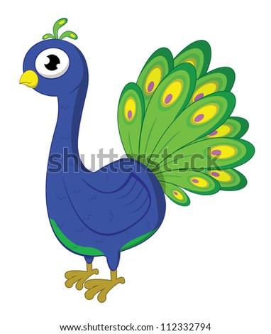 peacock - stock vector