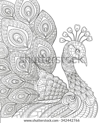 Peacock adult antistress coloring page black stock vector for Adult coloring pages peacock