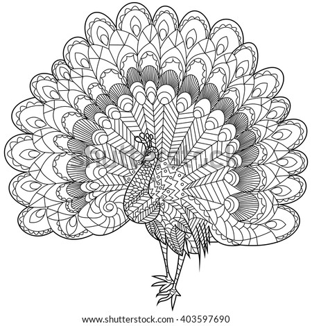 Peacock Coloring Book For Adults Vector Illustration Anti Stress Adult Zentangle