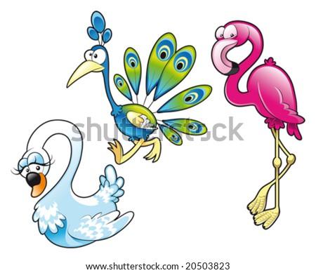 Peacock Swan Flamingo - stock vector