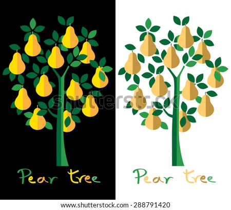 Pear tree set. Yellow pears vector illustration. - stock vector