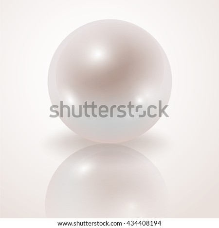 Pearl. White Pearl isolated on white background, decor, decoration. Realistic vector object.
