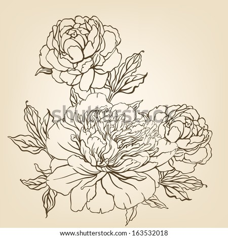 Peony: Vintage hand-drawing background with flowers. Vector illustration.  - stock vector