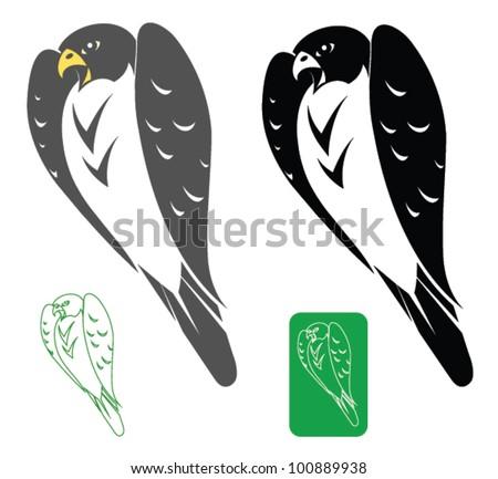 Peregrine falcon - vector illustration - stock vector