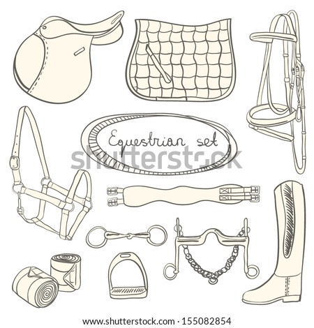 Perfect set of equestrian objects - collection of saddle, saddle pad, bridle and other horse things. Equestrian set with everything a horse needs.   - stock vector