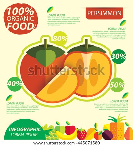 Persimmon. Infographic template. vector illustration.