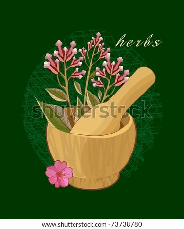 pestle for spices. herbal background - stock vector