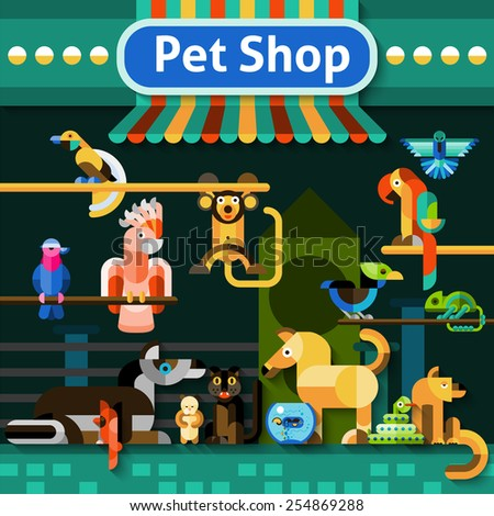 Pet shop background with pets domestic birds snake and iguana vector illustration - stock vector