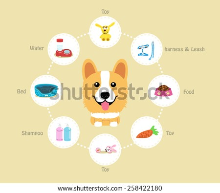 Pet Supplies (corgi) infographic on warm background - vector set of icons and illustrations - stock vector