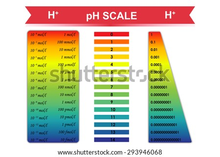 Ph Stock Images RoyaltyFree Images  Vectors  Shutterstock