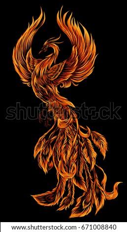 Phoenix Fire Bird Illustration Character Design Hand Stock Vector
