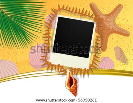 Photo frame with sea shells on beach sand. Vector. - stock vector