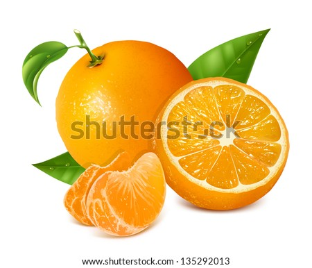 Photo-realistic vector illustration. Fresh oranges fruits with green leaves and slices.
