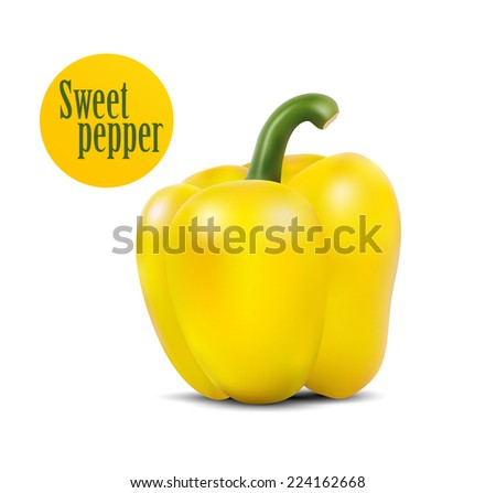 Photo-realistic vector illustration of yellow sweet pepper with drops of water. - stock vector