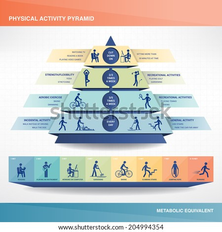 Physical activity pyramid - stock vector